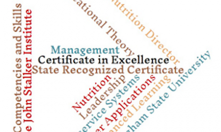 JSI Certificate of Excellence